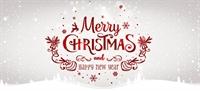Christmasny3